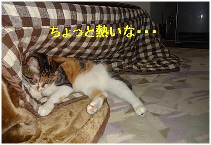 01_sora_05.jpg
